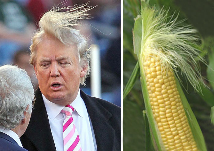 Trump is a quack
